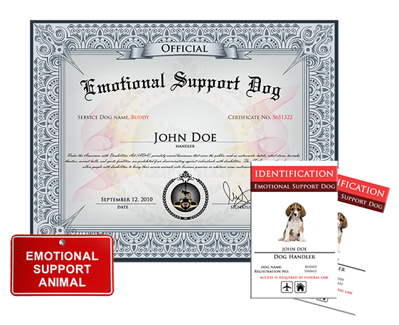 emotional support dog certification. Black Bedroom Furniture Sets. Home Design Ideas
