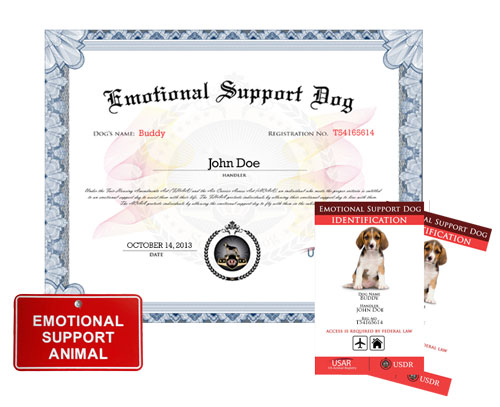 emotional support dog basic kit » us dog registry