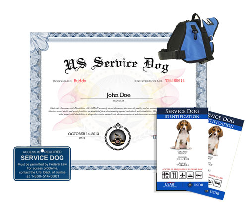 Service dog complete kit us dog registry for Service registry