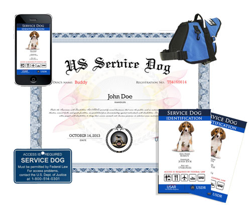 Register service dog us dog registry for Service registry