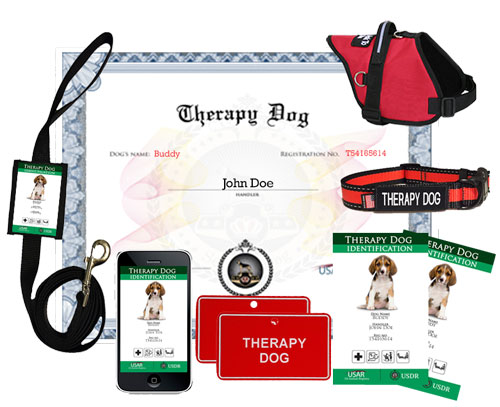 Service Dog Supplies Arizona