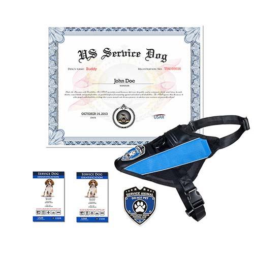 Service Dog Complete Kit