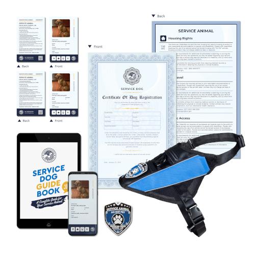 Service Dog Complete Plus Kit