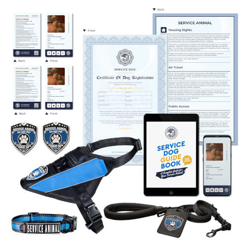 Service Dog Deluxe Kit
