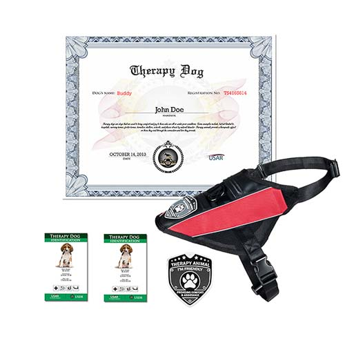 Therapy Dog Complete Kit