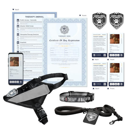 Therapy Dog Deluxe Kit