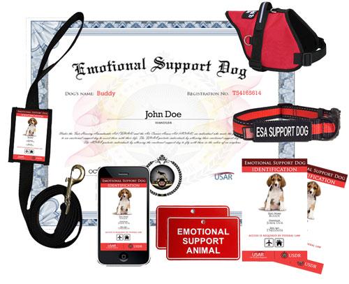 Image of: Vest Emotional Support Dog Get Started Rentprep Us Dog Registry Service Dog Registration And Supplies